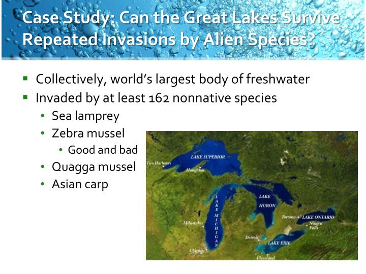 Case Study: Can the Great Lakes Survive Repeated Invasions by Alien Species?