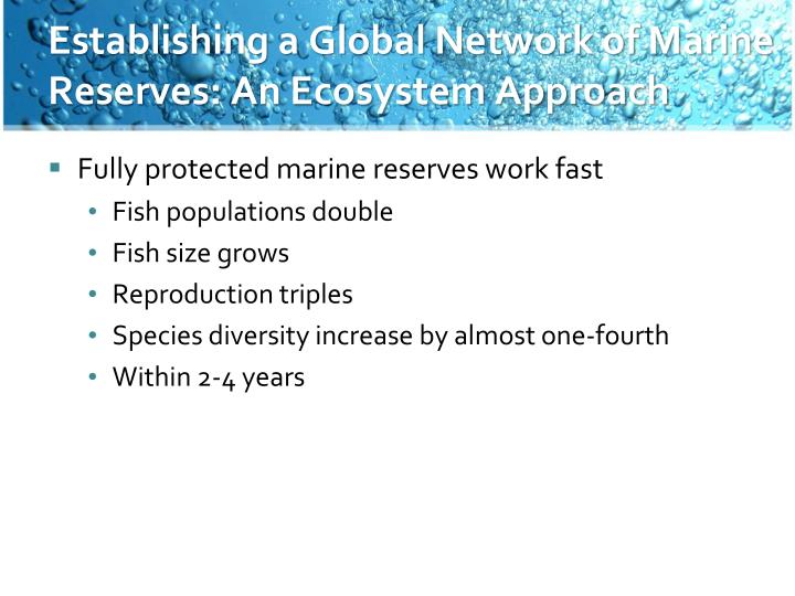Establishing a Global Network of Marine Reserves: An Ecosystem Approach