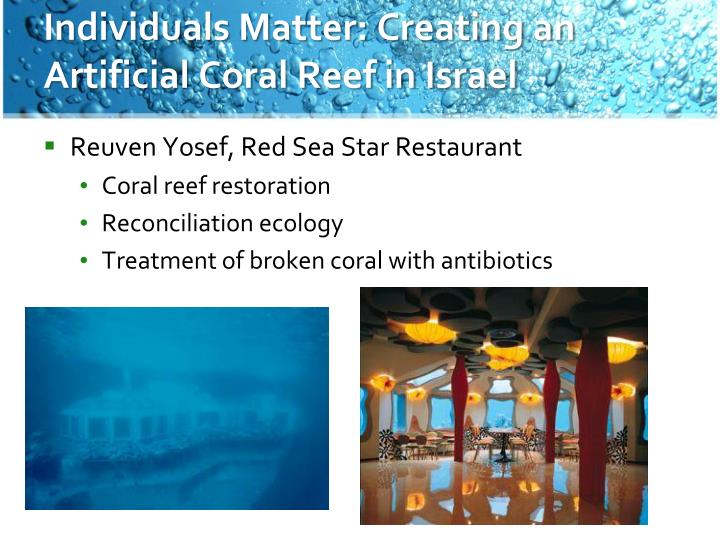 Individuals Matter: Creating an Artificial Coral Reef in Israel