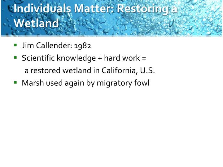 Individuals Matter: Restoring a Wetland