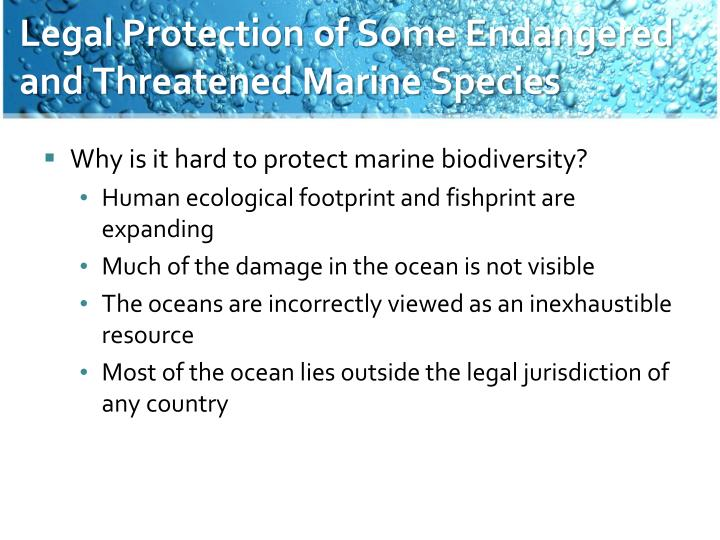 Legal Protection of Some Endangered and Threatened Marine Species