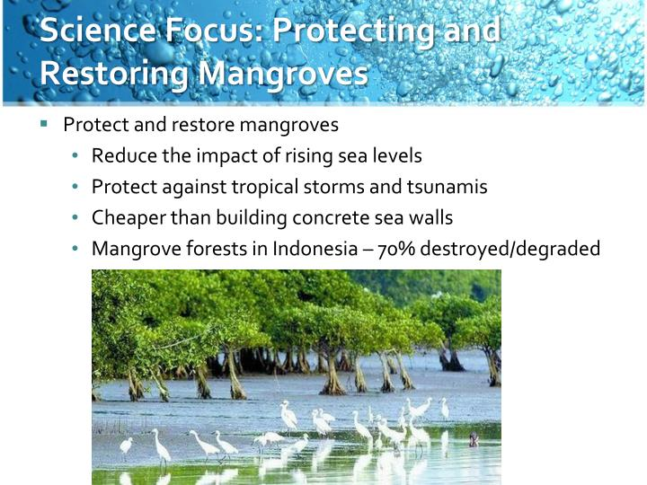 Science Focus: Protecting and