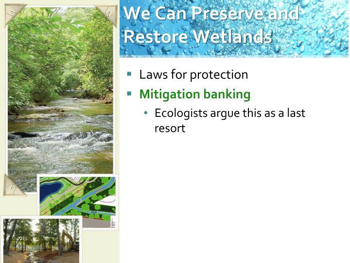 We Can Preserve and Restore Wetlands
