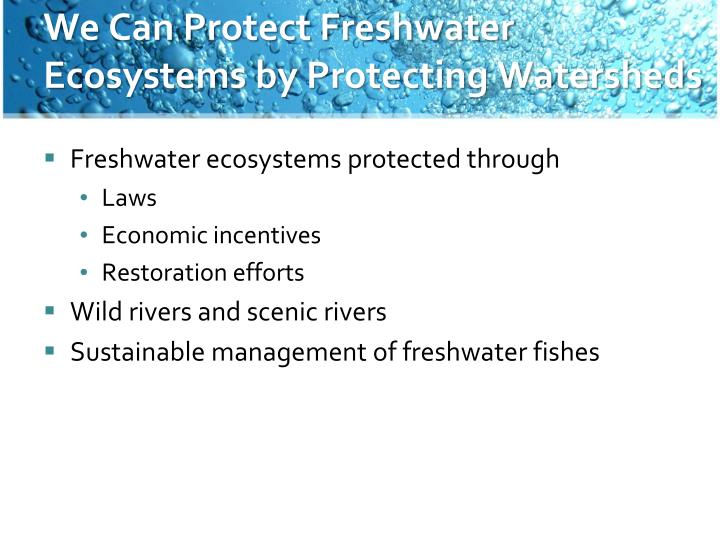We Can Protect Freshwater Ecosystems by Protecting Watersheds
