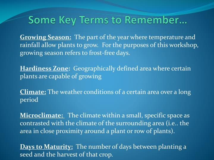 Some Key Terms to Remember…