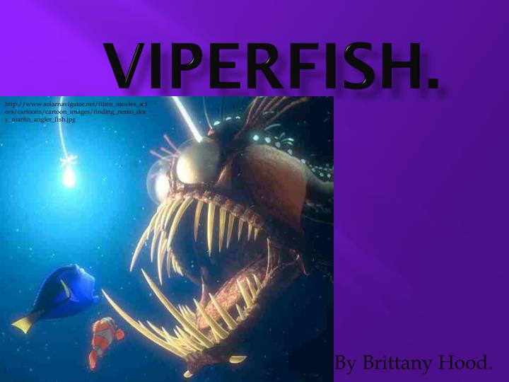 ppt - viperfish  powerpoint presentation
