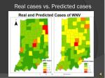 real cases vs predicted cases