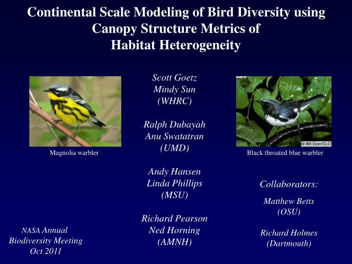 Continental Scale Modeling of Bird Diversity using Canopy Structure Metrics of