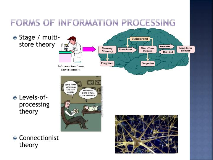 Forms of information processing