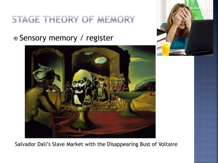 Stage theory of memory