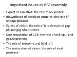 important issues in hiv assembly