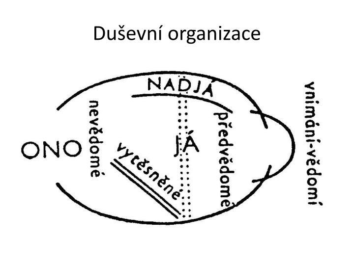 Duševní organizace