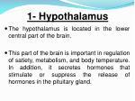 1 hypothalamus