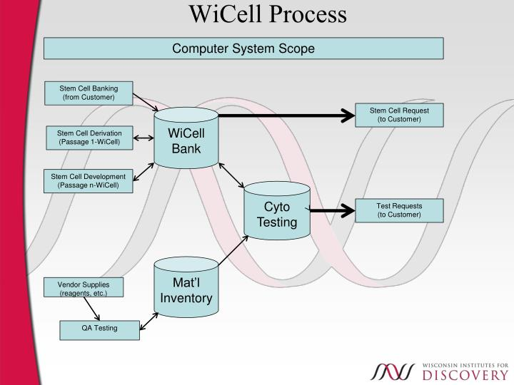 WiCell Process