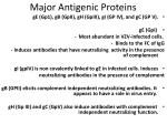 major antigenic proteins