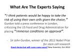 what are the experts saying1