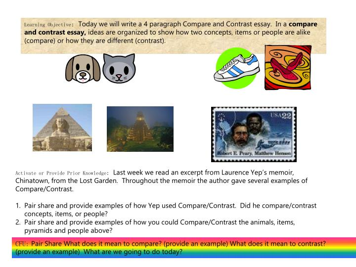compare contrast two animals essays