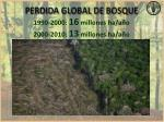 perdida global de bosque