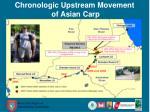 chronologic upstream movement of asian carp