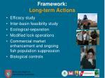 framework long term actions