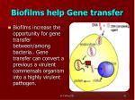 biofilms help gene transfer