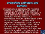 indwelling catheters and biofilms