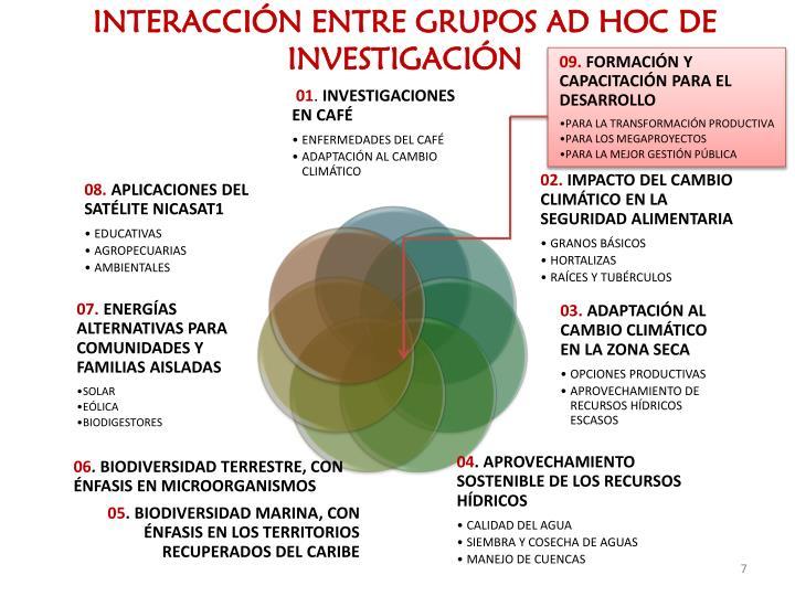 INTERACCIÓN ENTRE GRUPOS AD HOC DE INVESTIGACIÓN