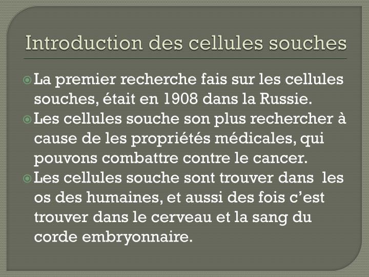 Introduction des cellules souches