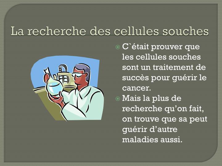 La recherche des cellules souches