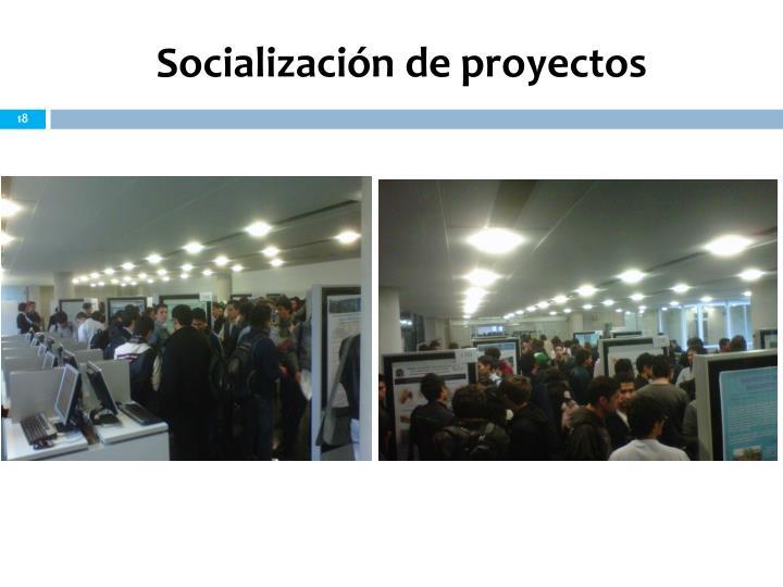 Socialización de proyectos
