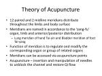 theory of acupuncture