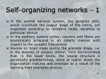 self organizing networks 1