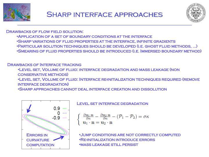 Sharp interface approaches