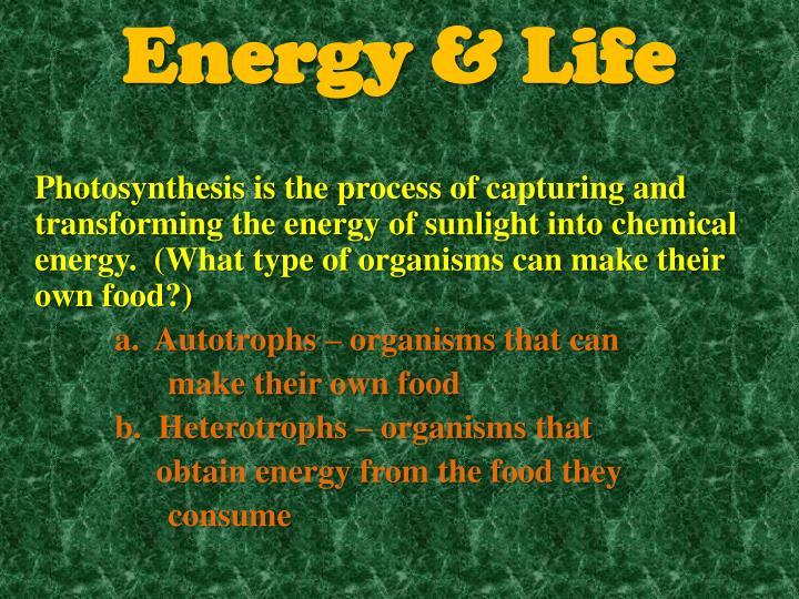 Energy life