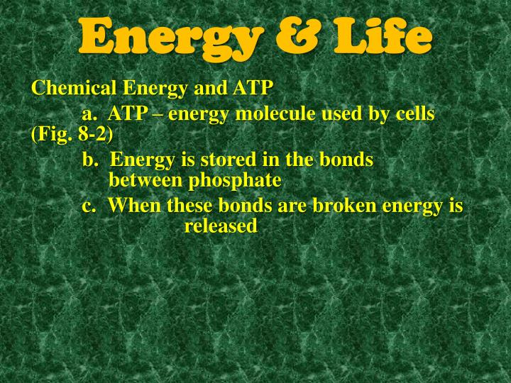 Energy life1
