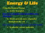 energy life3