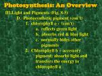photosynthesis an overview3