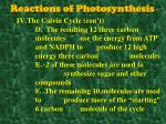 reactions of photosynthesis9