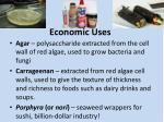 economic uses