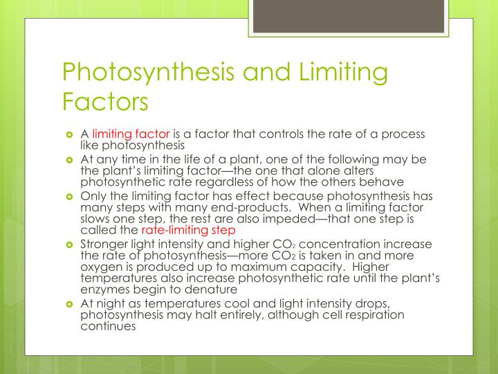 Photosynthesis and Limiting Factors