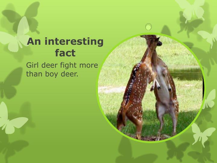 An interesting fact