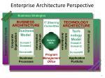 enterprise architecture perspective