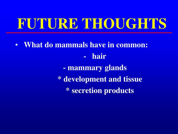 FUTURE THOUGHTS