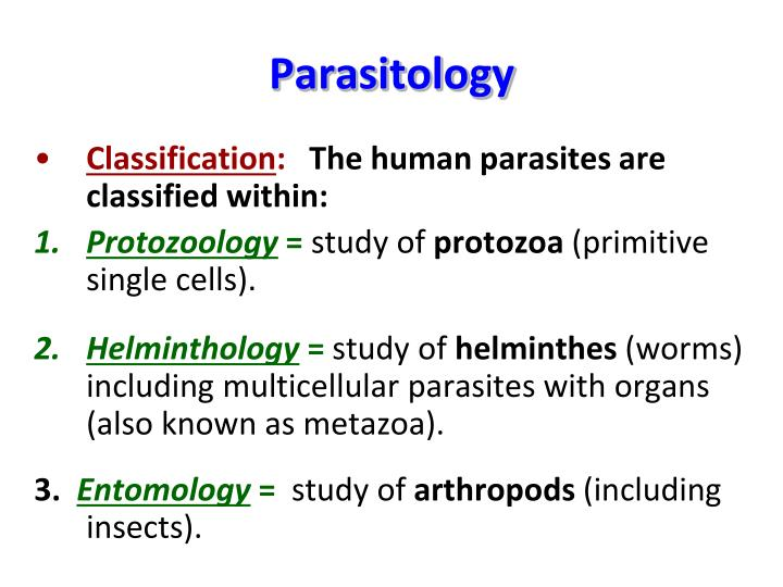 PPT - Parasitology PowerPoint Presentation - ID:2277763