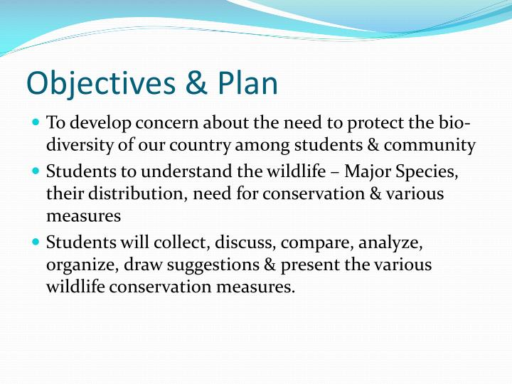 Objectives plan