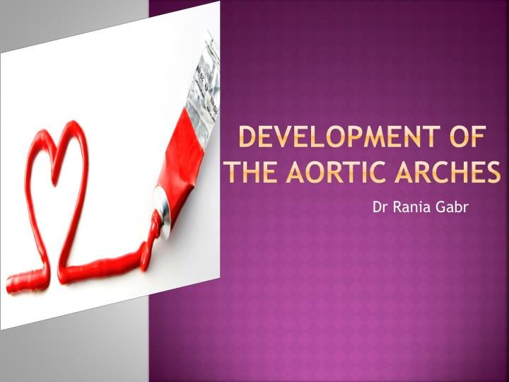 development of the aortic arches n.