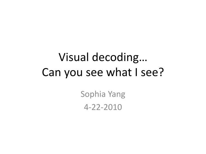 visual decoding can you see what i see n.