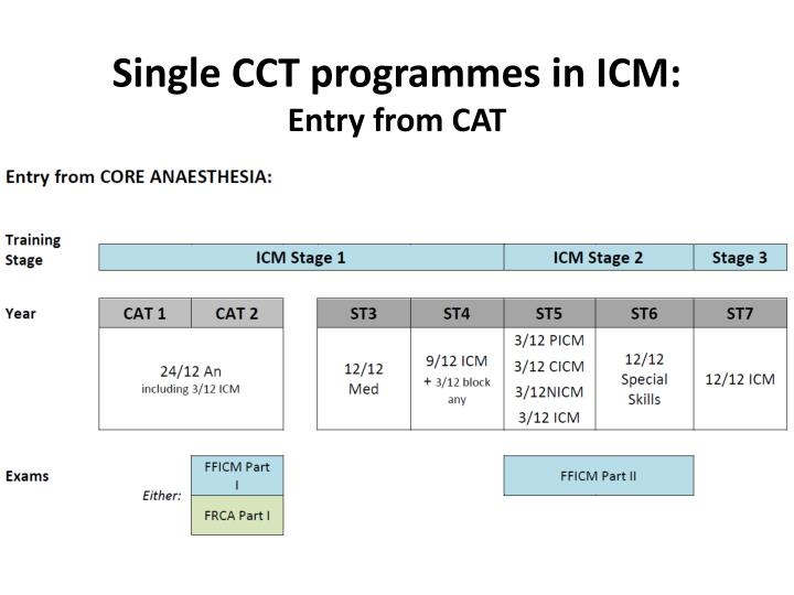 Single CCT programmes in ICM: