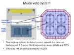 muon veto system