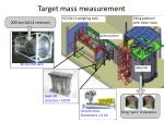 target mass measurement